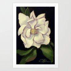 A Warmer Magnolia DP160918b Art Print
