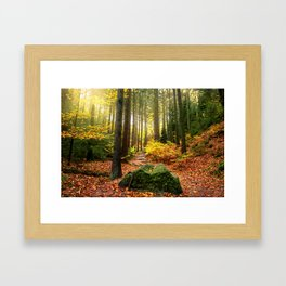 Path Through The Trees - Landscape Nature Photography Framed Art Print