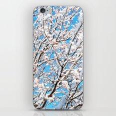 Snowy Tree iPhone & iPod Skin