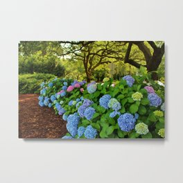 Colorful Pom-Poms Metal Print