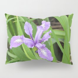 Pale Iris Pillow Sham