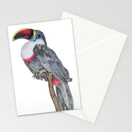 Perching Toucan Stationery Cards