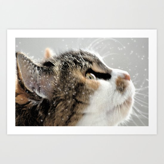 >^..^< .... in the Snow Art Print