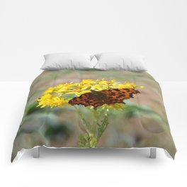 Comma Butterfly Comforters