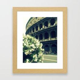 Summer in the Center Framed Art Print