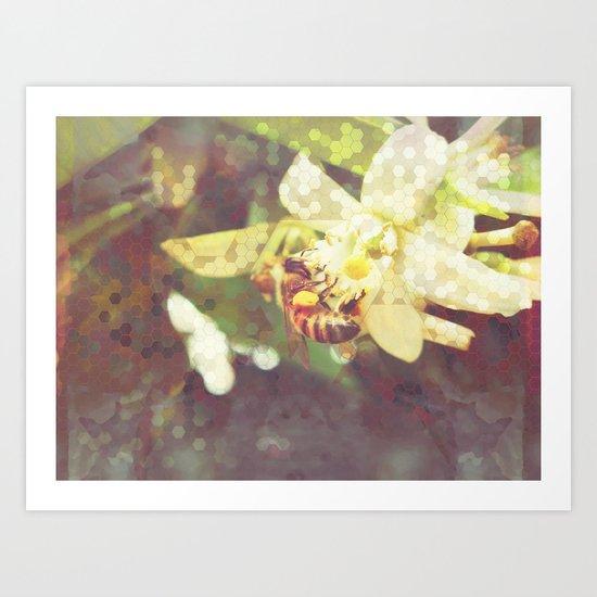 Honey Bee: Pearl Art Print
