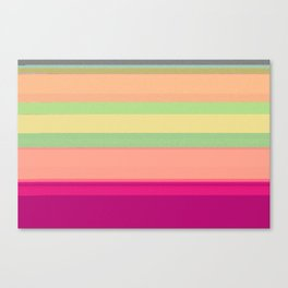 a beautifully corrupted file Canvas Print