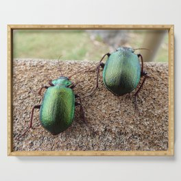 Iridescent  Green Beetles Serving Tray