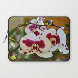 White spotted orchid Laptop Sleeve