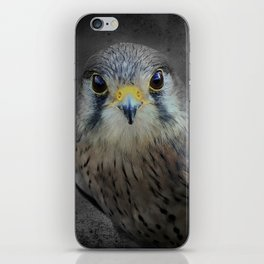 A Kestrel called Rosie iPhone Skin
