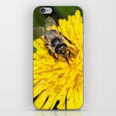 Bees tongue iPhone & iPod Skin