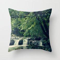 Rio en Tabira Throw Pillow