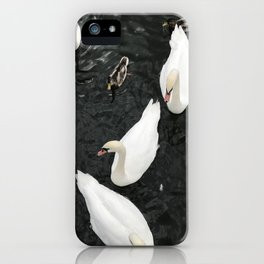 The lake of swans by  Jana Sigüenza iPhone Case
