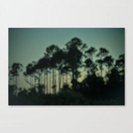 Evening on the Florida Coast Canvas Print
