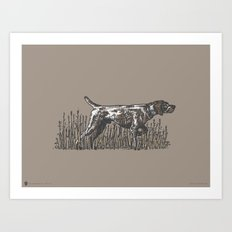 Pointer in Color Art Print