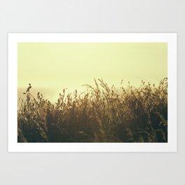 Cornish Summer Sunset over Mawgan Porth Beach, Cornwall Art Print