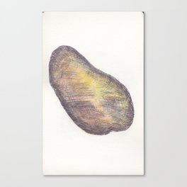 Ballpen Mango got coloured Canvas Print