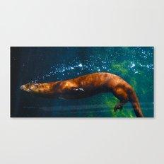 Otter Bubbles Canvas Print