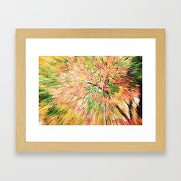FALL CANOPY ABSTRACT Framed Art Print