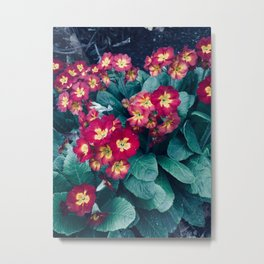 Pretty Little Red & Yellow Flowers Metal Print