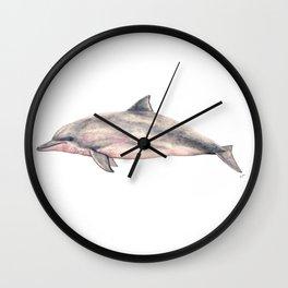 Tucuxi (Sotalia fluviatilis) Wall Clock