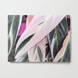 Pink & Green Leaf #2 Metal Print