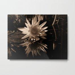 A lily Metal Print