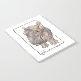 Fiona the Hippo - Bashful Notebook