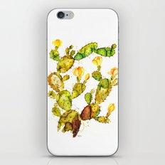 Cactaceae iPhone & iPod Skin