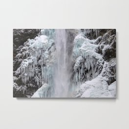 Cloaked in Ice Metal Print