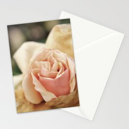 Delicate Rose Stationery Cards