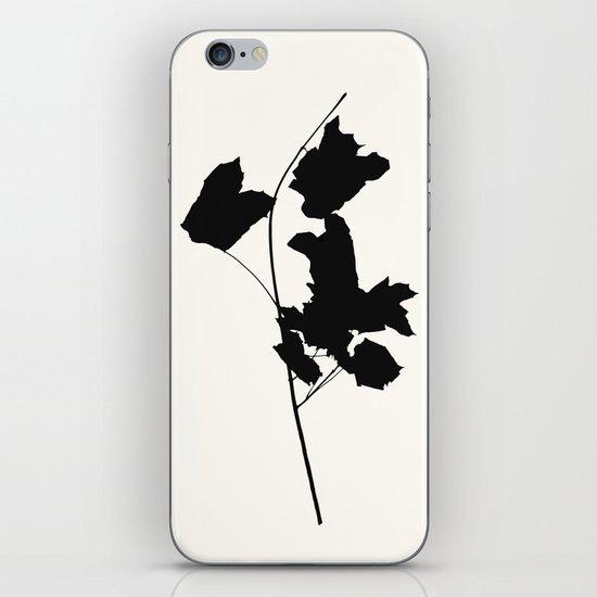 maple 1 iPhone & iPod Skin