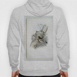 159 Fringilla montifringilla. Bramblefinch Hoody