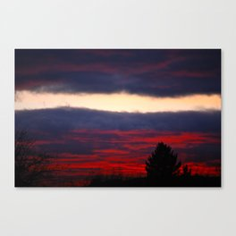 separation leaves ember in the sunsets Canvas Print