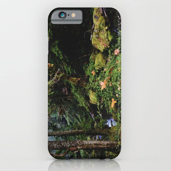Late Fall Forest iPhone & iPod Case