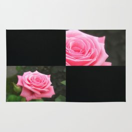 Pink Roses in Anzures 4 Blank Q2F0 Rug