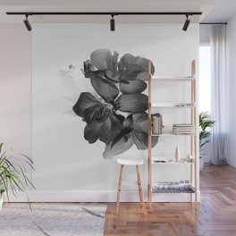 Black Geranium in White Wall Mural