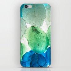 Capiz Shells iPhone & iPod Skin