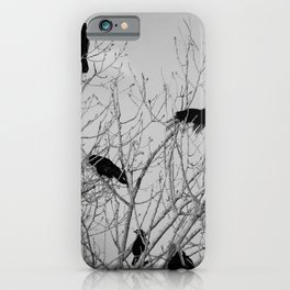 Murder Of Crows - Five iPhone Case