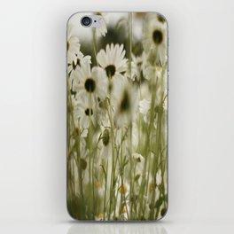 white daisies :) iPhone Skin