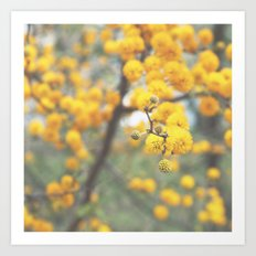 pollen infestation ... don't breathe! Art Print