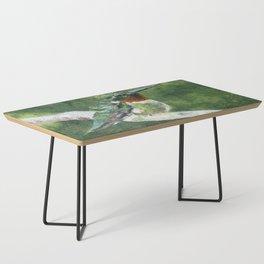 Romeo the Hummingbird by Teresa Thompson Coffee Table