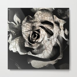 Rose forming from light and shadows Metal Print