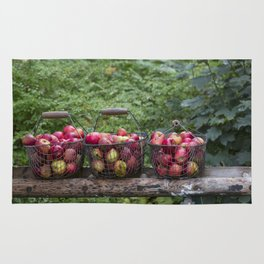 Autumn Apples Rustic Organic Food Still Life Rug