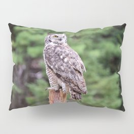 Great Horned Owl on a Post Pillow Sham