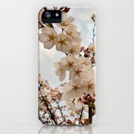 Vintage Cherry Blossoms iPhone Case