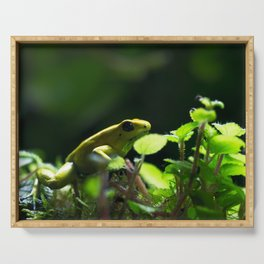 Yellow Frog Serving Tray