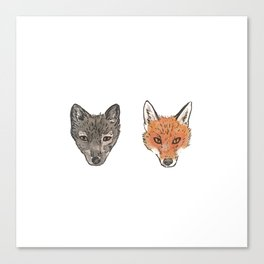 Arctic Fox Red Fox Canvas Print