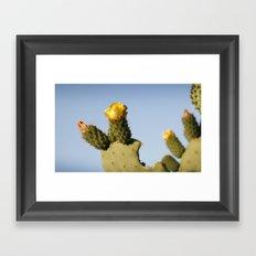 Chumbera Framed Art Print
