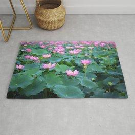Pink Lotus (Nelumbo nucifera) flowers and leaves in lake Rug